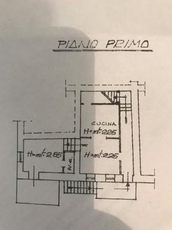 Planimetria IV